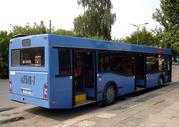 Автобус  МАЗ 103