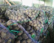 Продам картофель разных сортов