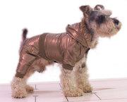 Одежда для собак осень-зима.