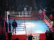 Ринги боксерские напольные на упорах,  напольные на растяжках,  ринги