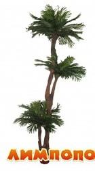 life tree (Польша) Пальма 220 см