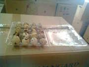 Пластиковая прозрачная упаковка для перепелиных яиц,  пет,  pet