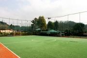 Сетка заградительная для ограждения стадионов,  кортов,  футбольных поле