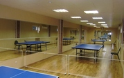 Столы для настольного тенниса всепогодные и для закрытых помещений.