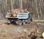 Вывоз веток и листвы Киев 0675012805