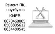 Windows в Киеве,  программы,  сеть,  профилактика