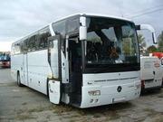 Аренда Автобуса для поездки в Европу Мерседес 50 мест