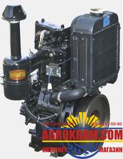 Одноцилиндровый  двигатель DLH1100 на китайский минитрактор