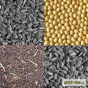 Куплю отходы масличных,  отходы семечки, жмых