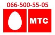 Красивый золотой vip номер МТС 066-500-55-05