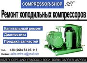 «Compressor-shop» Промышленный спец сервис по ремонт холодильных компр