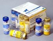 Эурикан DHPPI 2 - L вакцина (1 фл. DHPPI 2 + 1 фл. L)