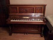 Пианино C. Neugebauer Nache