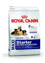 Royal Canin корм для собак maxi starter 15кг.