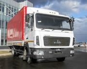 Новый грузовой тентованный автомобиль МАЗ-4371N2-531-000 Зубренок