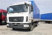 Новый грузовой автомобиль МАЗ-4371N2-522-030 Зубренок