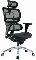 Кресло ALS Ergohuman Standart полированное,  сетка/сетка, в черном цвете