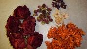 Флористичний набір для творчрсті