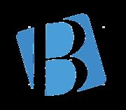 Блоракс — №1 для ефективного розвитку Вашого бізнесу. Веб розробка.
