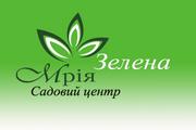 Рулонный газон Киев . создание ландшафтных проектов