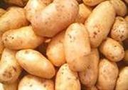 Картофель (картошка) оптом в Украине,  Киев,  продажа картофеля картошки