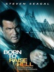 фильм отчаянный мститель Born to Raise Hell