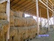Продаётся сено тюкованное